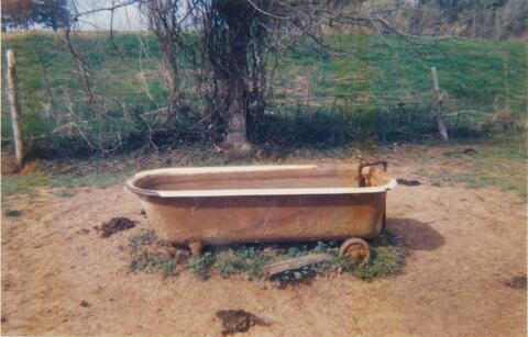 William Christenberry - Bathtub as Watering Trough, near Greensboro, Alabama