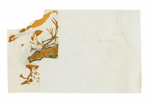 Joseph Beuys - Ohne Titel (Hirsch)