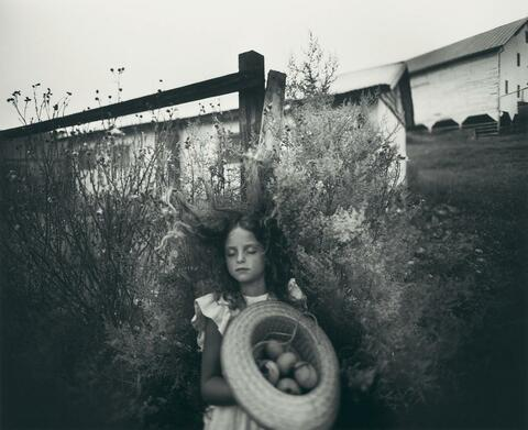 Sally Mann - Yard Eggs