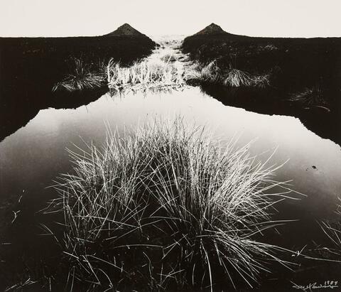 Robert Häusser - Moor (Marsh)