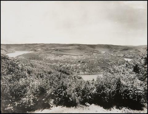 August Sander - Die 4 Seen bei Boppard. Drachenfels. Lärche