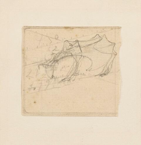 Joseph Beuys - Ziege