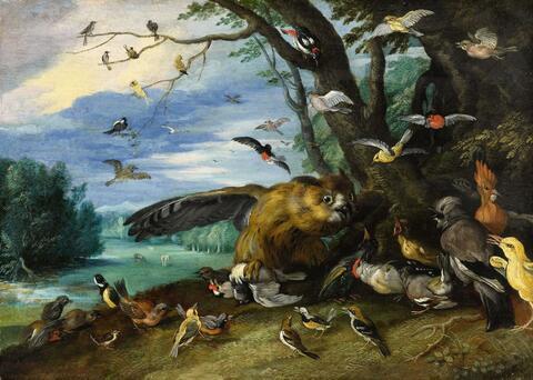 Jan van Kessel the Elder - Birds fighting