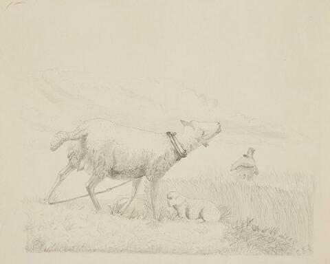 Ernst Fries - Mutterschaf mit liegendem Lamm