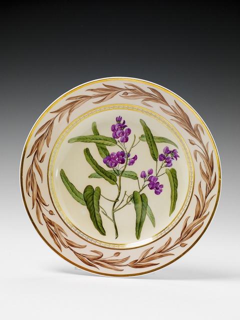 """Botanischer Teller """"Kennedia monophylla"""" -"""