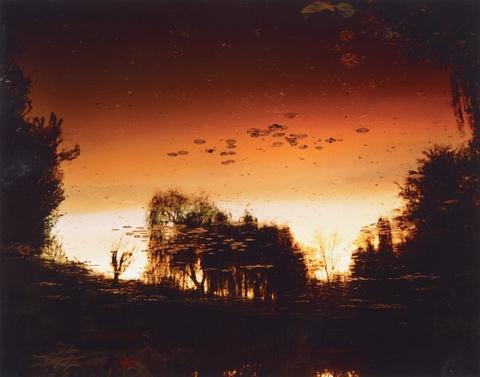 Elger Esser - Giverny VII