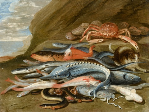 Jan van Kessel the Elder, attributed to - Still Life with Fish, a Crab and a Cat