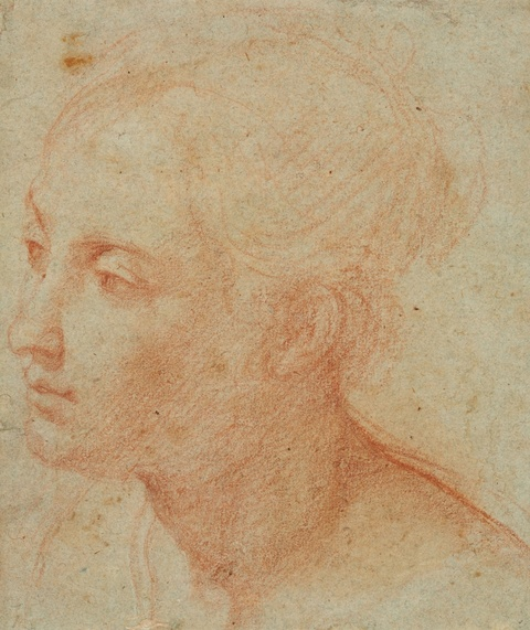 Bologneser Meister des 17. Jahrhunderts - Kopf einer jungen Frau
