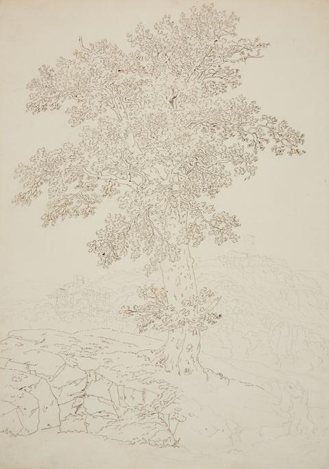 Jacob Philipp Hackert - Ansicht von Montelupo und Capraia
