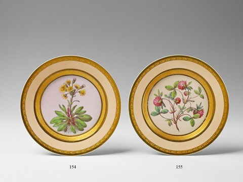"Botanischer Teller ""Cineraria integrifolia"" -"