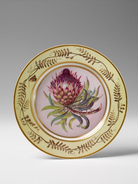 """Botanischer Teller """"Protea longifolia"""" -"""