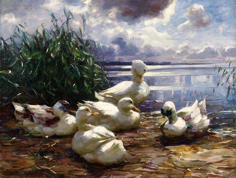 Alexander Koester - Enten am Seeufer