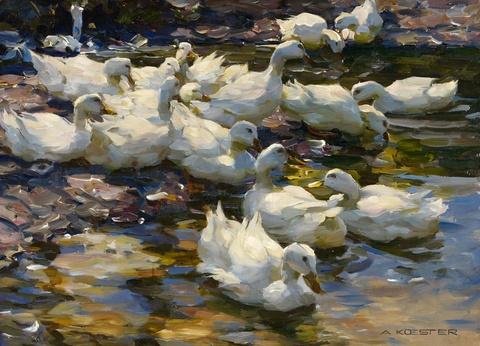 Alexander Koester - Enten im Wasser