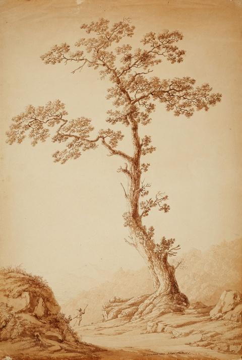 Jacob Philipp Hackert - Landschaft bei Camaldoli mit großer Eiche und einem Wanderer