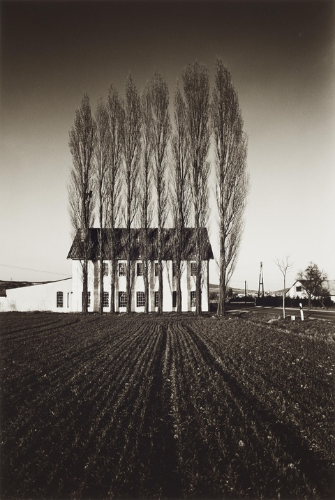 Heinrich Riebesehl - Untitled (from the series: Agrarlandschaften)