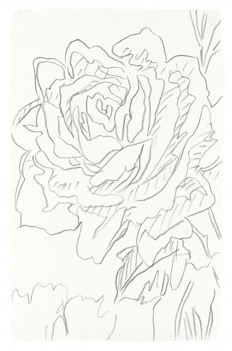 Andy Warhol - Rose
