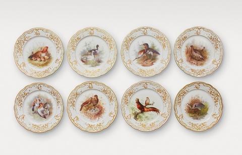 Acht Vogelteller -