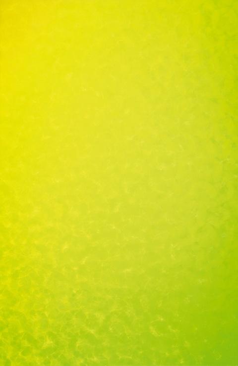 Peter Reichenberger - HTA 0° bis 90° gelb-gelbgrün