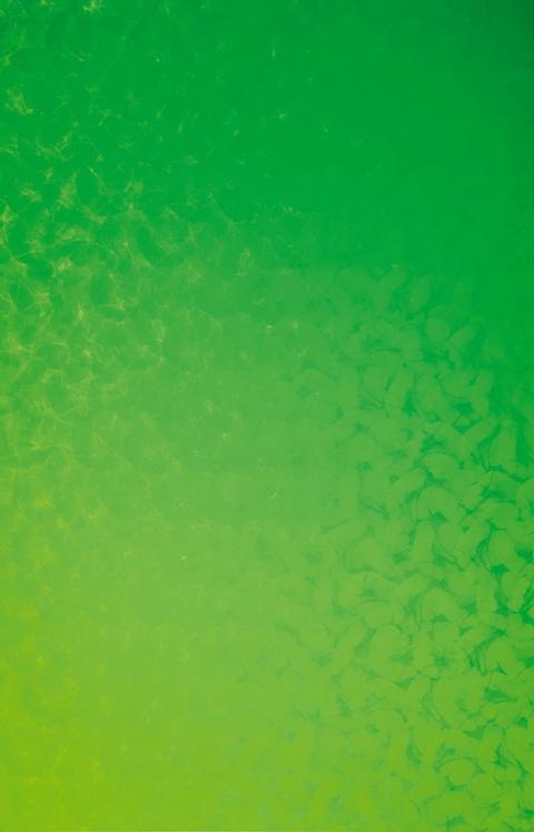 Peter Reichenberger - HTA 0° bis 90° - gelbgrün-hellgrün