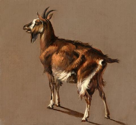 Jacob Philipp Hackert - Studie einer Ziege