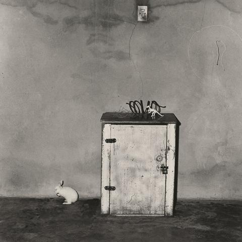 Roger Ballen - Little loose Rabbit