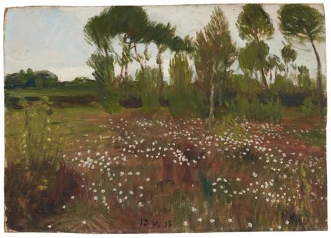 Otto Modersohn - Heidelandschaft im Moor mit Wollgras