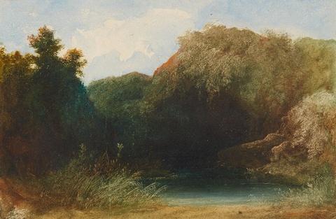 Carl Spitzweg - Weiher im Walde