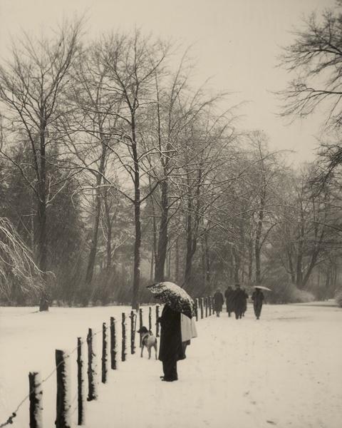 August Sander - Winter im Stadtwald