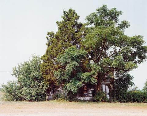 William Christenberry - Palmist Building, Havana Junction, Alabama