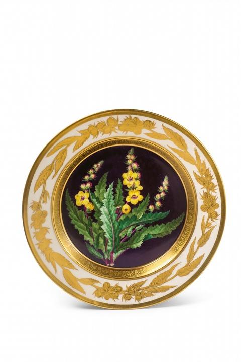 A Berlin KPM porcelain plate with botanical decor -
