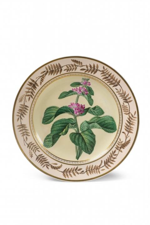 Teller mit botanischem Dekor -