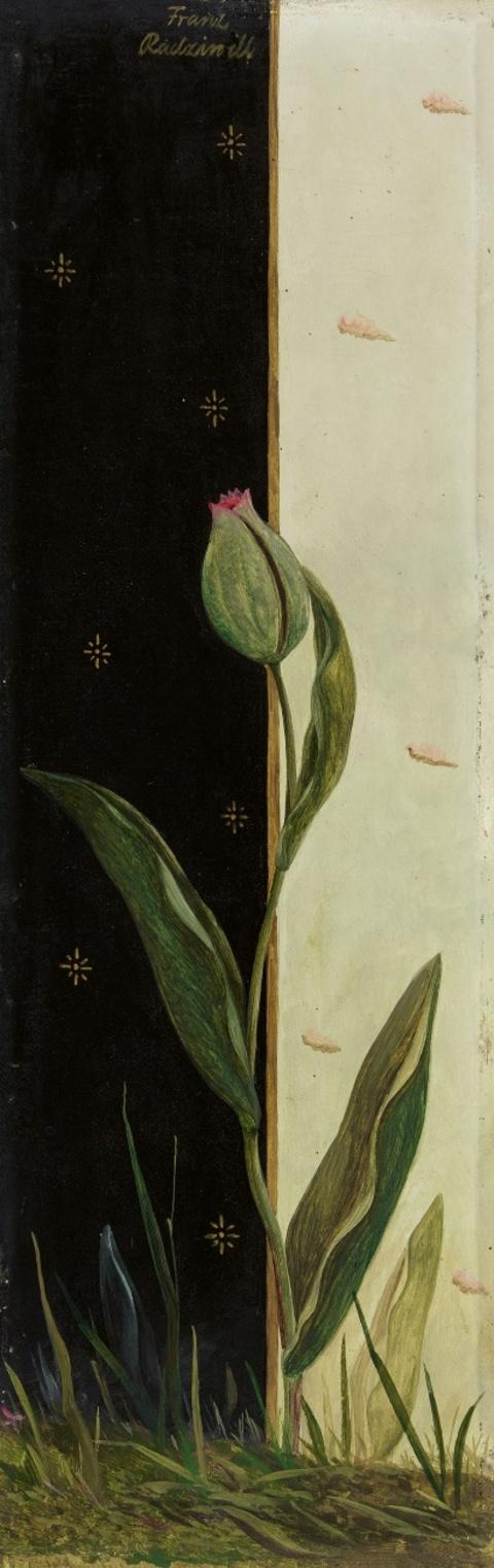 Franz Radziwill - Tulpen gegen schwarz und weiß