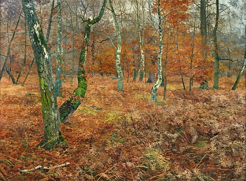 Paul Müller-Kaempff - Autumn Forest