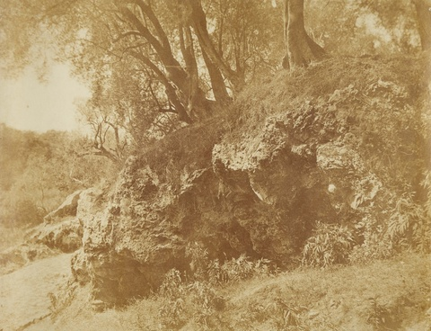 Giacomo Caneva - Studie mit Felsen und Bäumen, Campagna Romana
