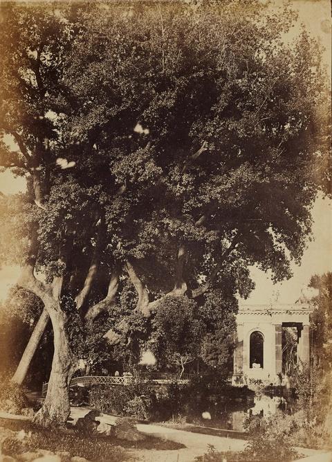 Giacomo Caneva, zugeschrieben - Der Teich der Villa Borghese
