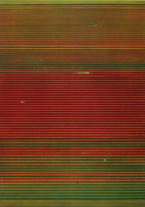 Andreas Gursky - Ohne Titel XVIII