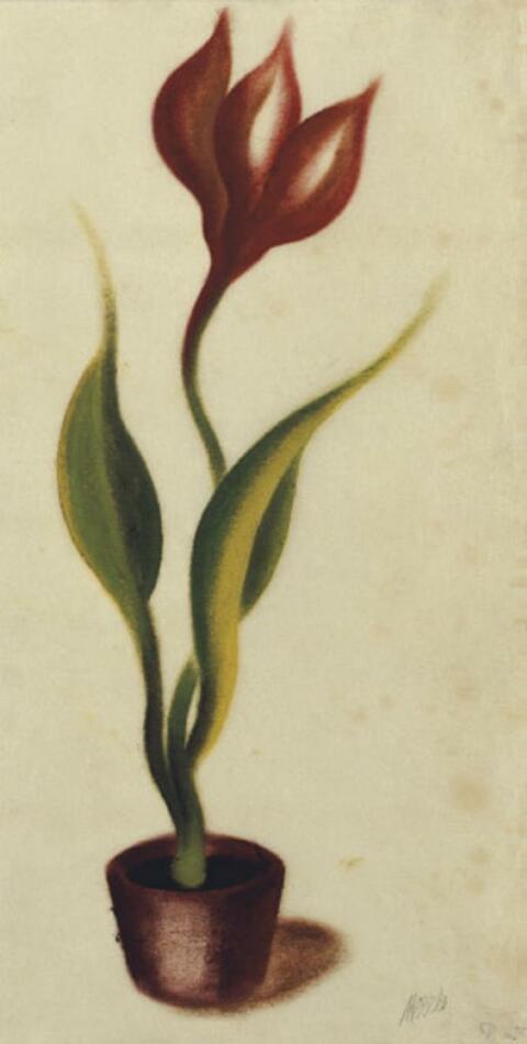 Heinrich Hoerle - Tulpe