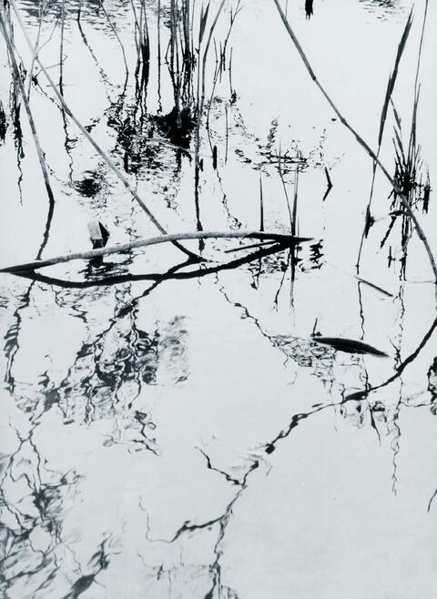 Lotte Laska - Spiegelungen