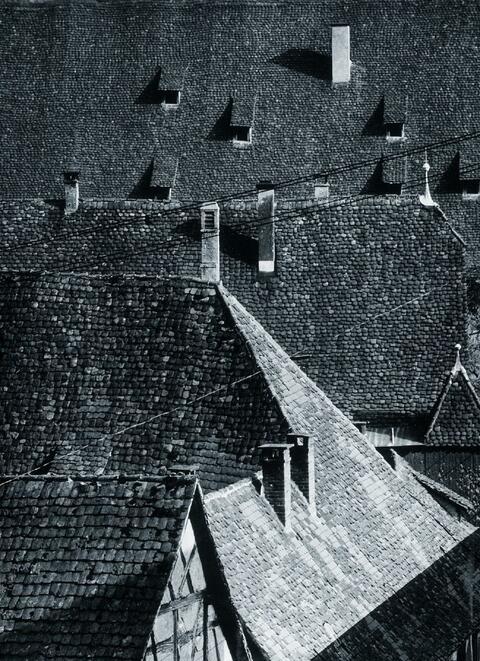 Ludwig Windstosser - Dächer im Klosterhof