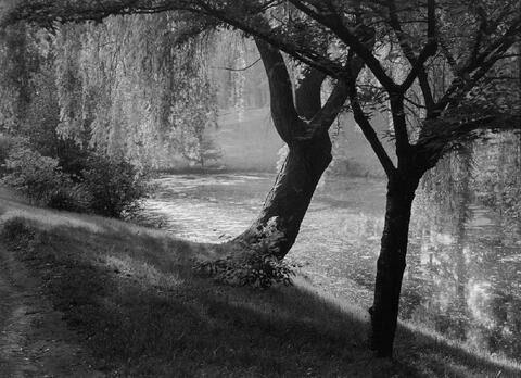 Albert Renger-Patzsch - Flußlandschaft