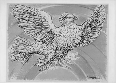 Pablo Picasso - Colombe volant (à l'arc-en-ciel)