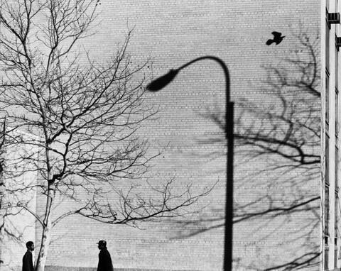 André Kertész - In the Street