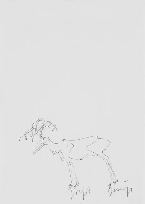 Joseph Beuys - Ohne Titel (Hirsch/Elch)