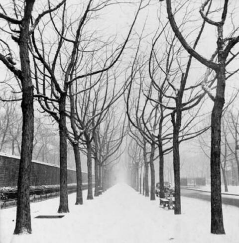Herbert Tobias - Allee Edgar Quinet im Winter