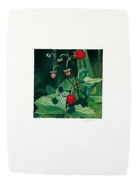 Karin Kneffel - Ohne Titel (Erdbeeren)