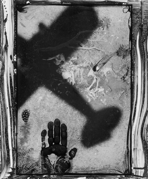 Peter Beard - Starvo, for the end of the game