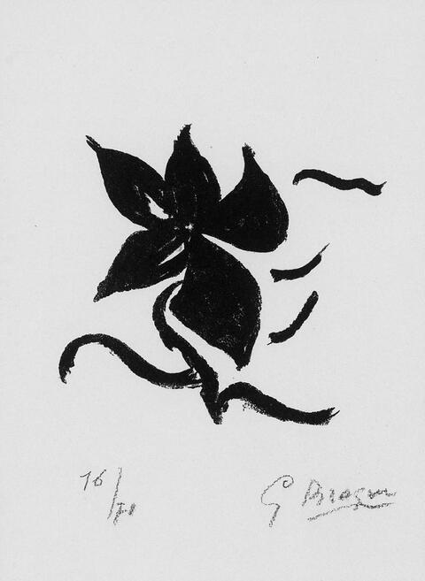 Georges Braque - Fleur