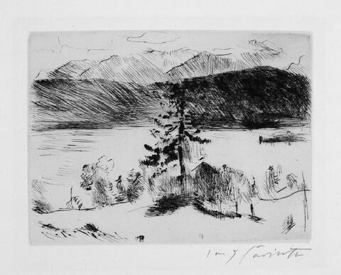 Lovis Corinth - Lärche am Walchensee