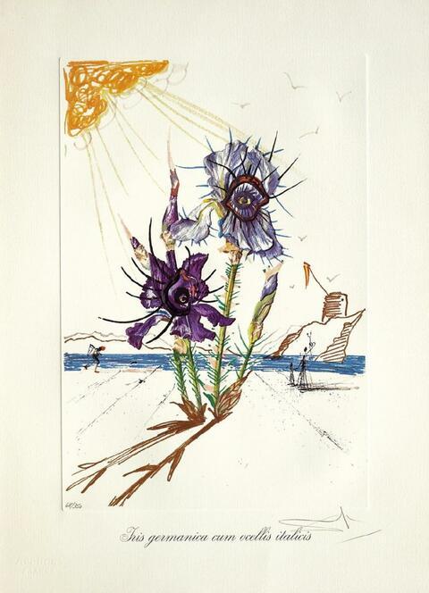 Salvador Dali Y Domenech - Surrealistic Flowers