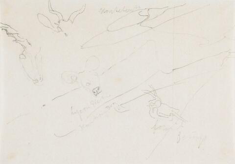 Joseph Beuys - Ohne Titel (Tiere)
